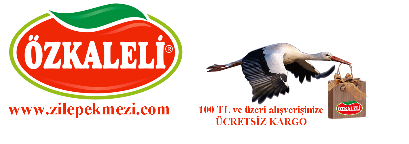 www.zilepekmezi.com